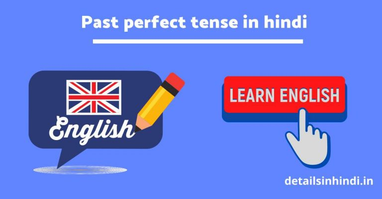Past perfect tense in Hindi with Example
